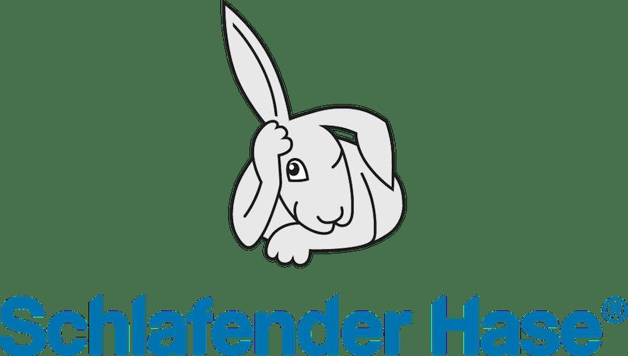 schlafender Hase M&A Beratung